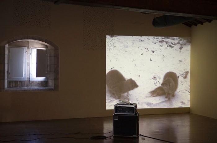 Thierry Fournier | Sentinelle 4